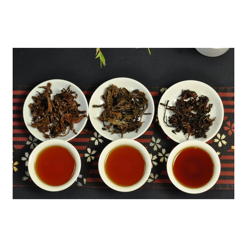The Master samples of middle aged puerh