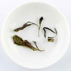 2019 Spring white tea from...